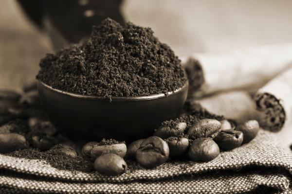 Cuisine t ouf ou wak - Marc de cafe canalisation ...